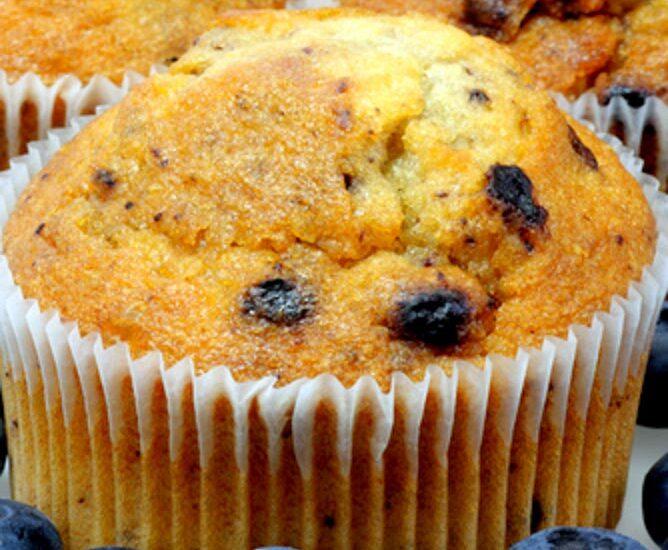 Gluten Free Blueberry Lovers Muffins