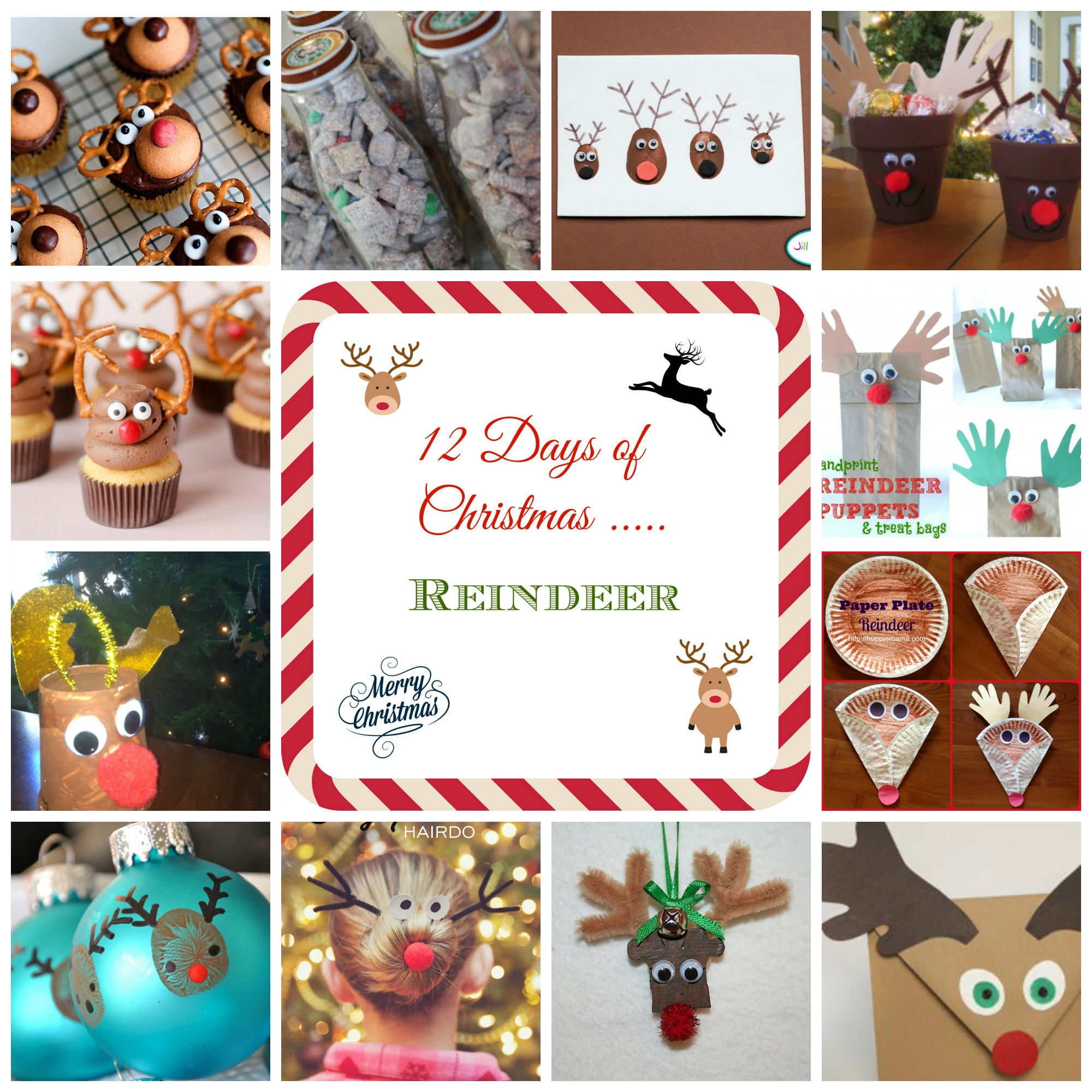 12 Days of Christmas - Reindeer