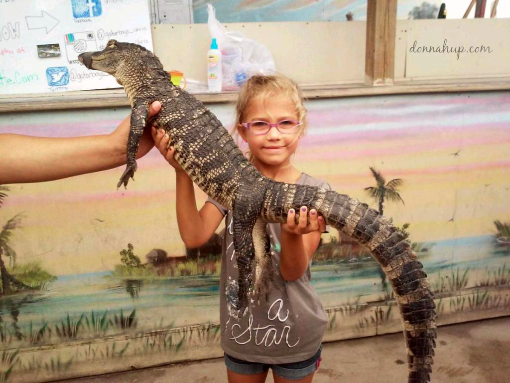 Lily Everglades Holiday Park - Home of the Gator Boys #Review #Travel donnahup