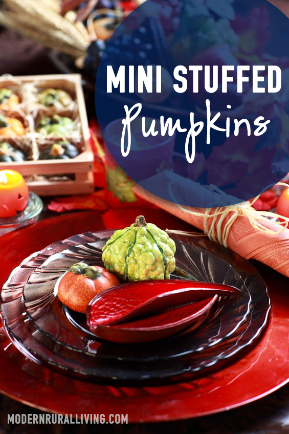 Mini Stuffed Pumpkins an Easy Gourmet Meal