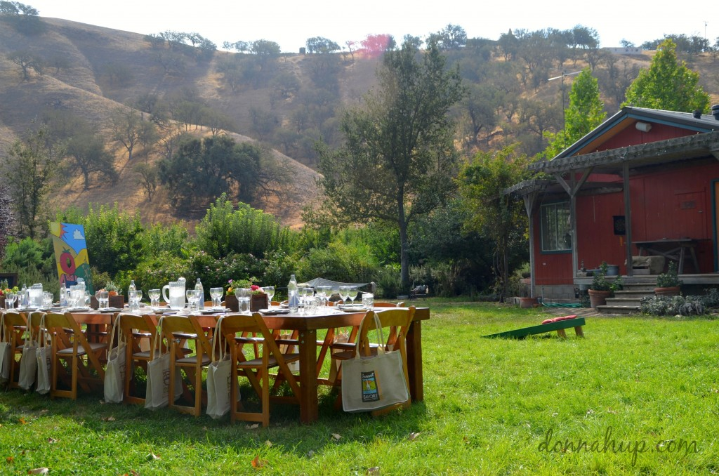 Celebrating Autumn's Harvest at Windrose Farm in Paso Robles