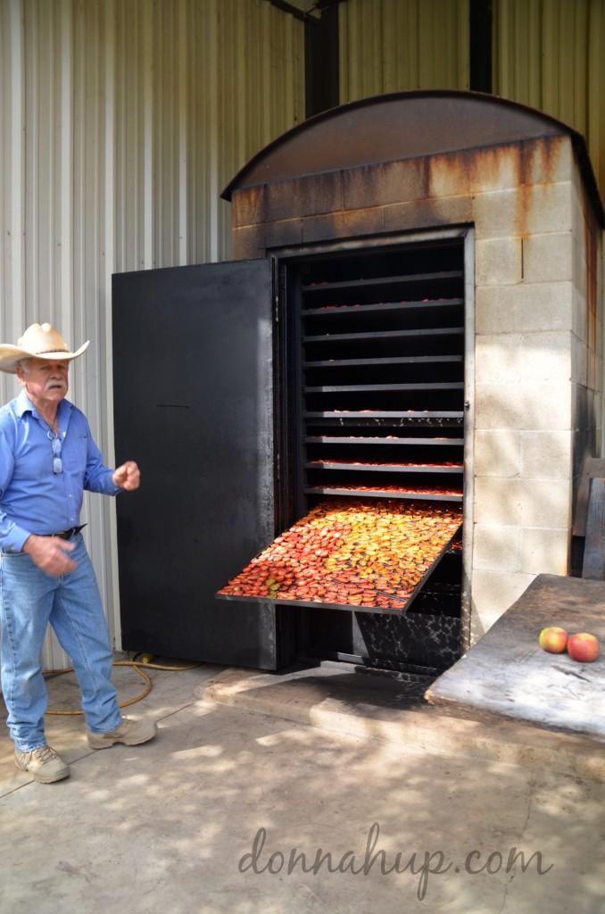 Celebrating Autumn's Harvest at Windrose Farm in Paso Robles #SunsetSavor #SavorCC #travel #california #farmtotable #harvest