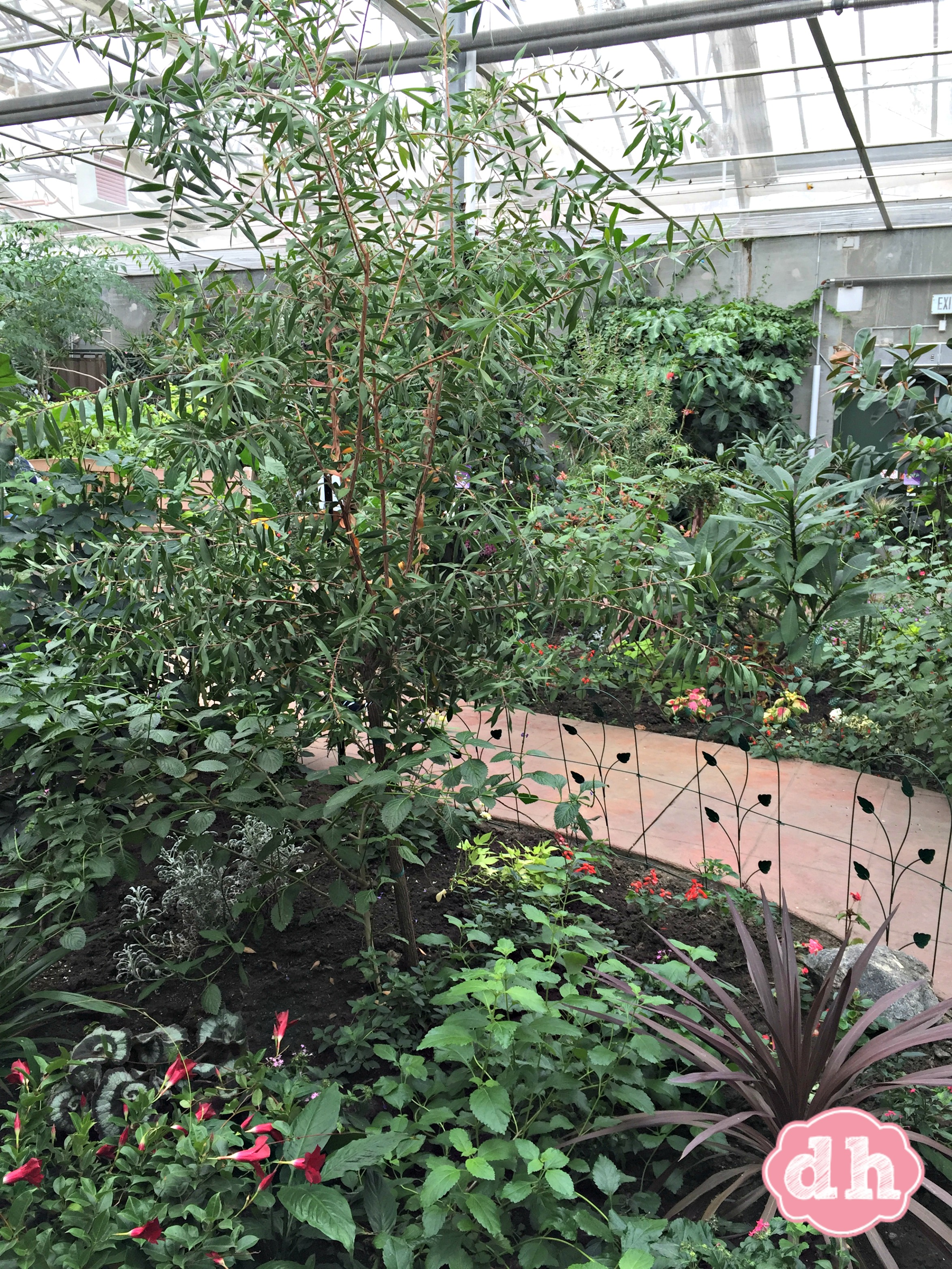 Sertoma Butterfly House & Marine Cove in Sioux Falls