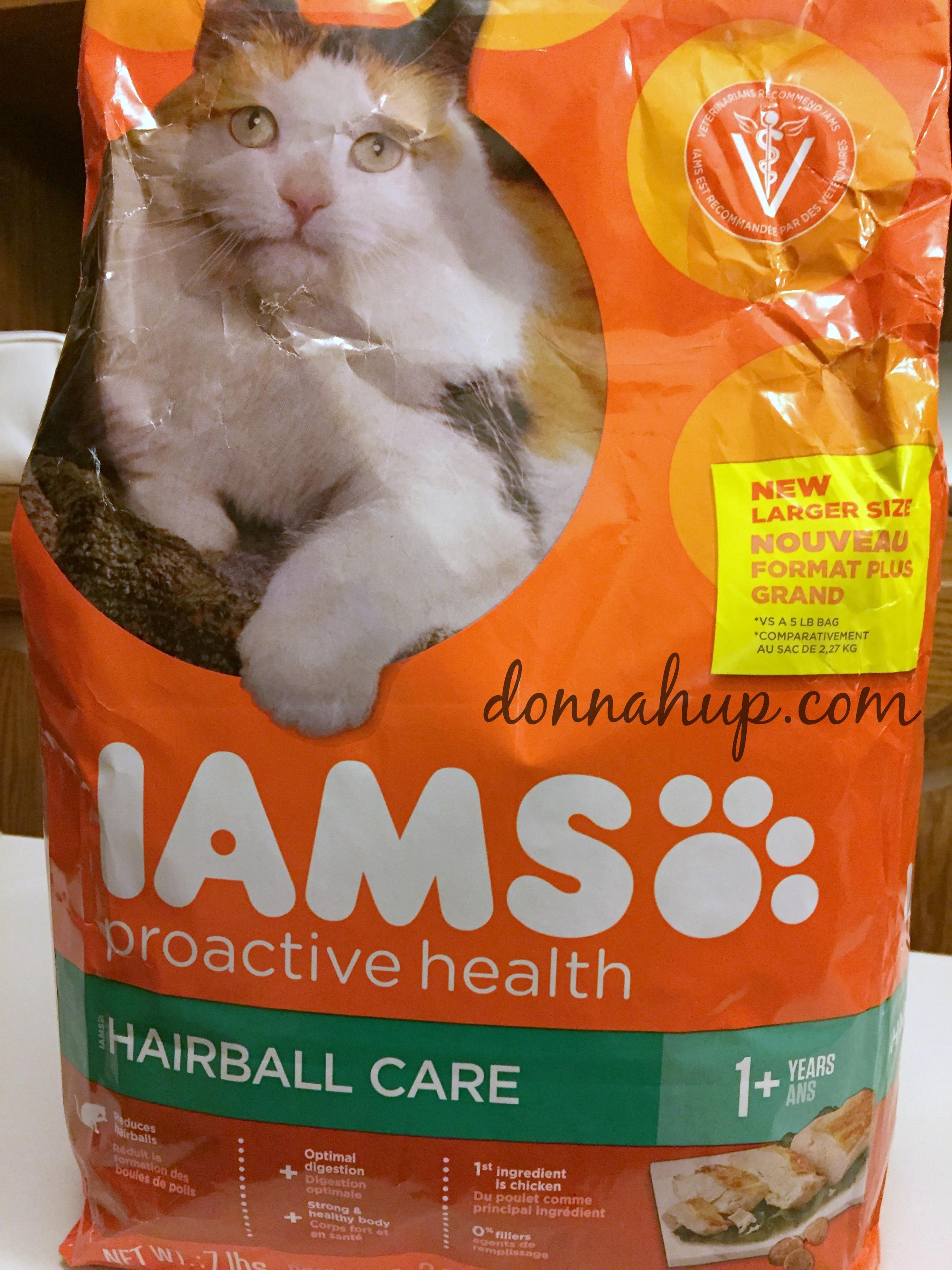DIY Cat Station #IAMSCat #CollectiveBias