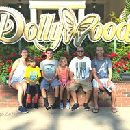 Dollywood TN