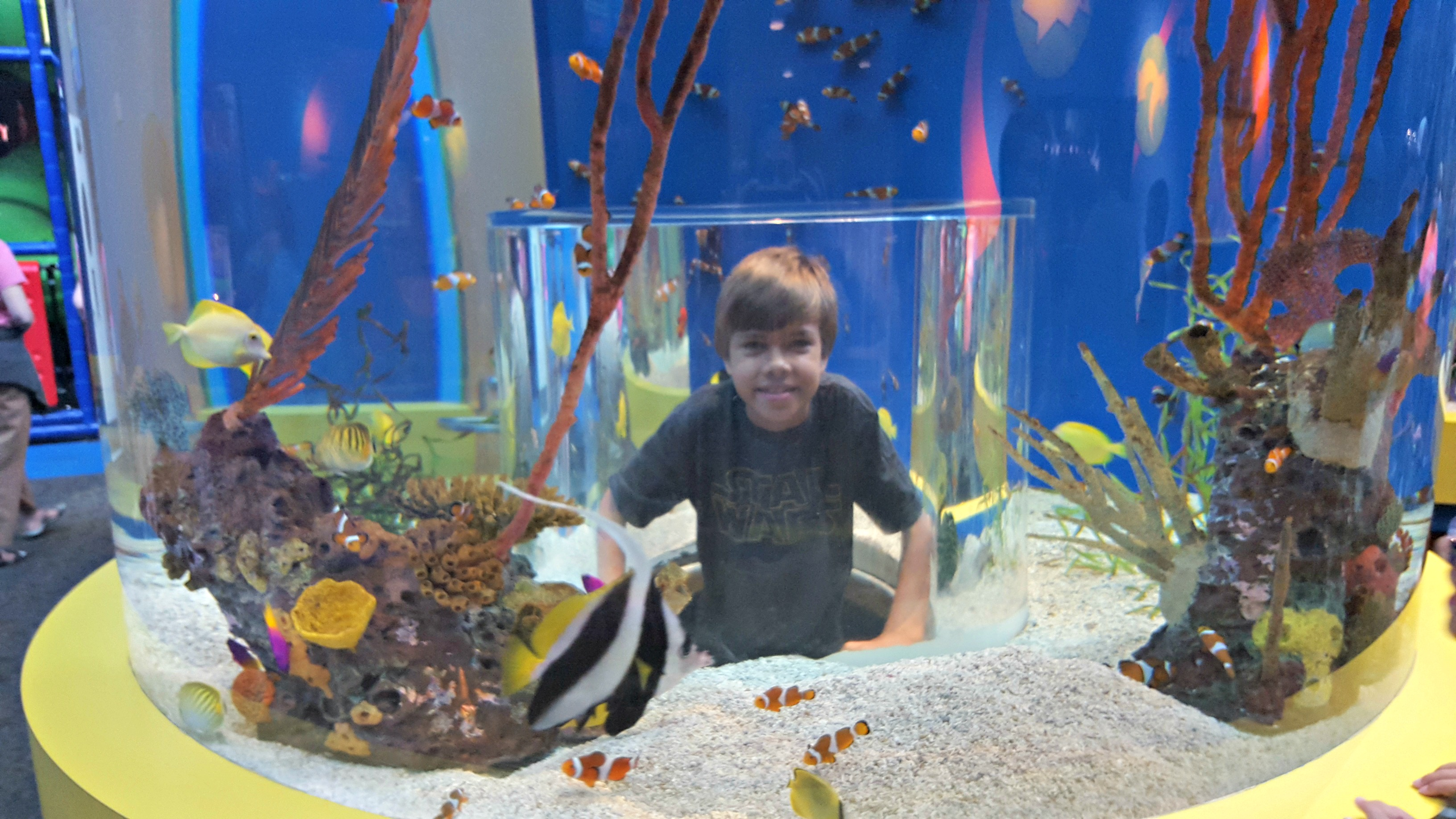 Ripley's Smoky Mountain Aquarium and More