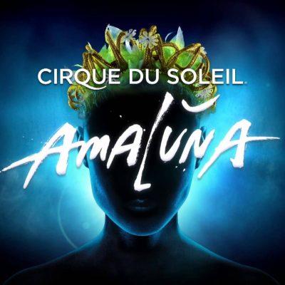 Cirque du Soleil – Amaluna